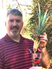 Ryan Burk holding a pineapple start with roots in a glass of water.