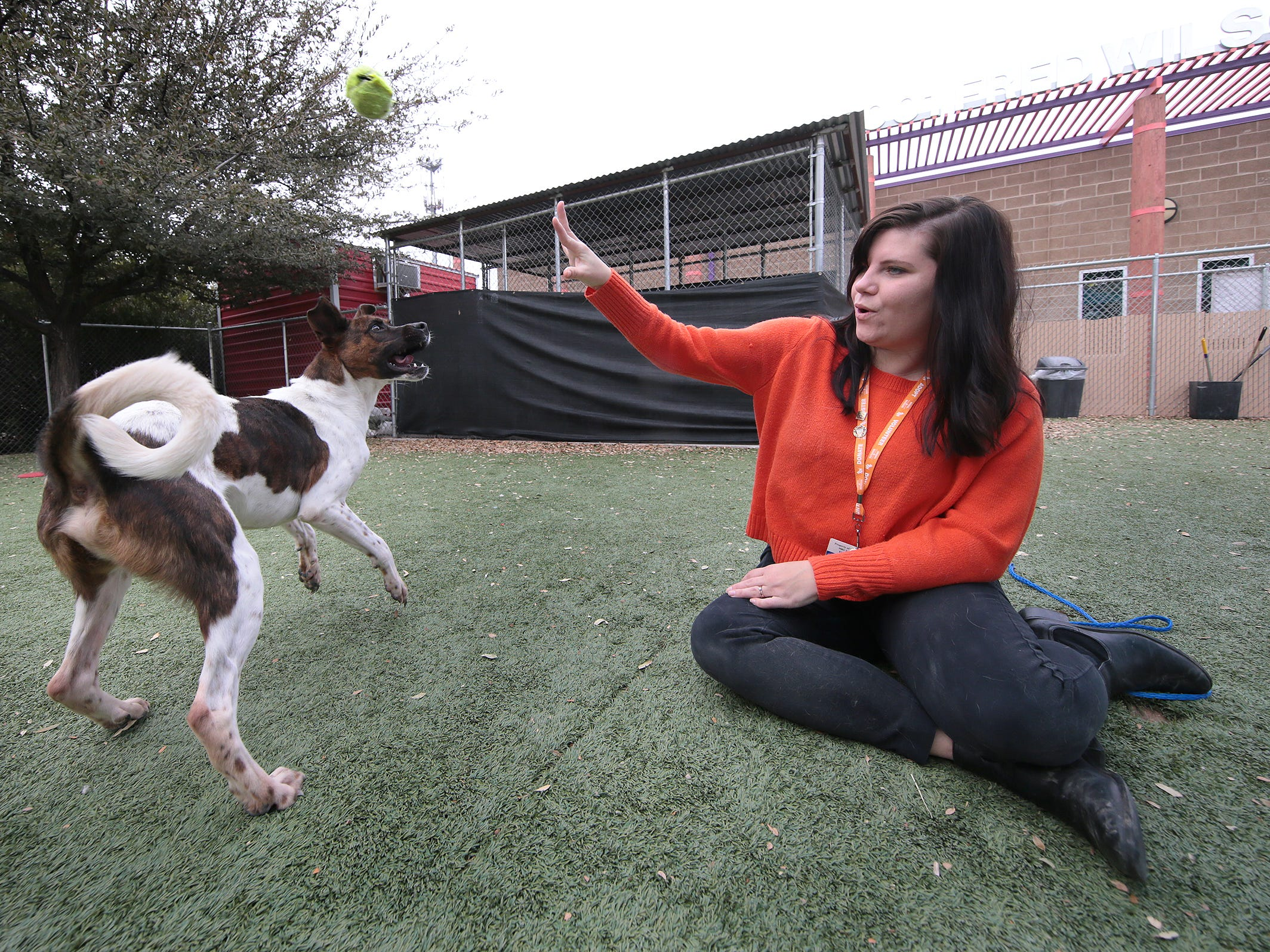 Michelle Anderson plays with Tony in the meet-and-greet area Wednesday, Jan. 30, 2019. The city of El Paso's Animal Services department is preparing for its free adoption day Saturday. The shelter needs to make room for an expected influx of animals in the spring.