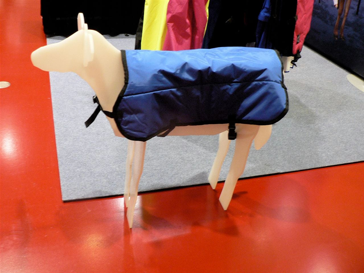 The model calf in the Udder Tech display was dressed for the weather.