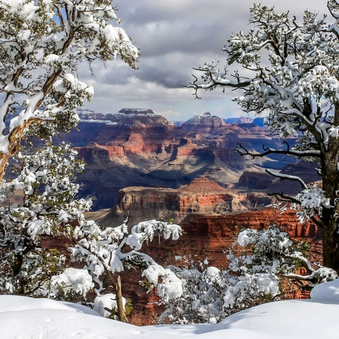 Although the Grand Canyon's North Rim is closed...