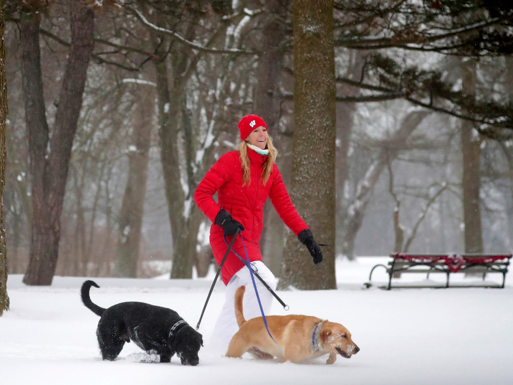 Mary Becker walks her dogs, Reggie, and Archie, at Lake Park near her home in Milwaukee on Jan. 28, 2019.
