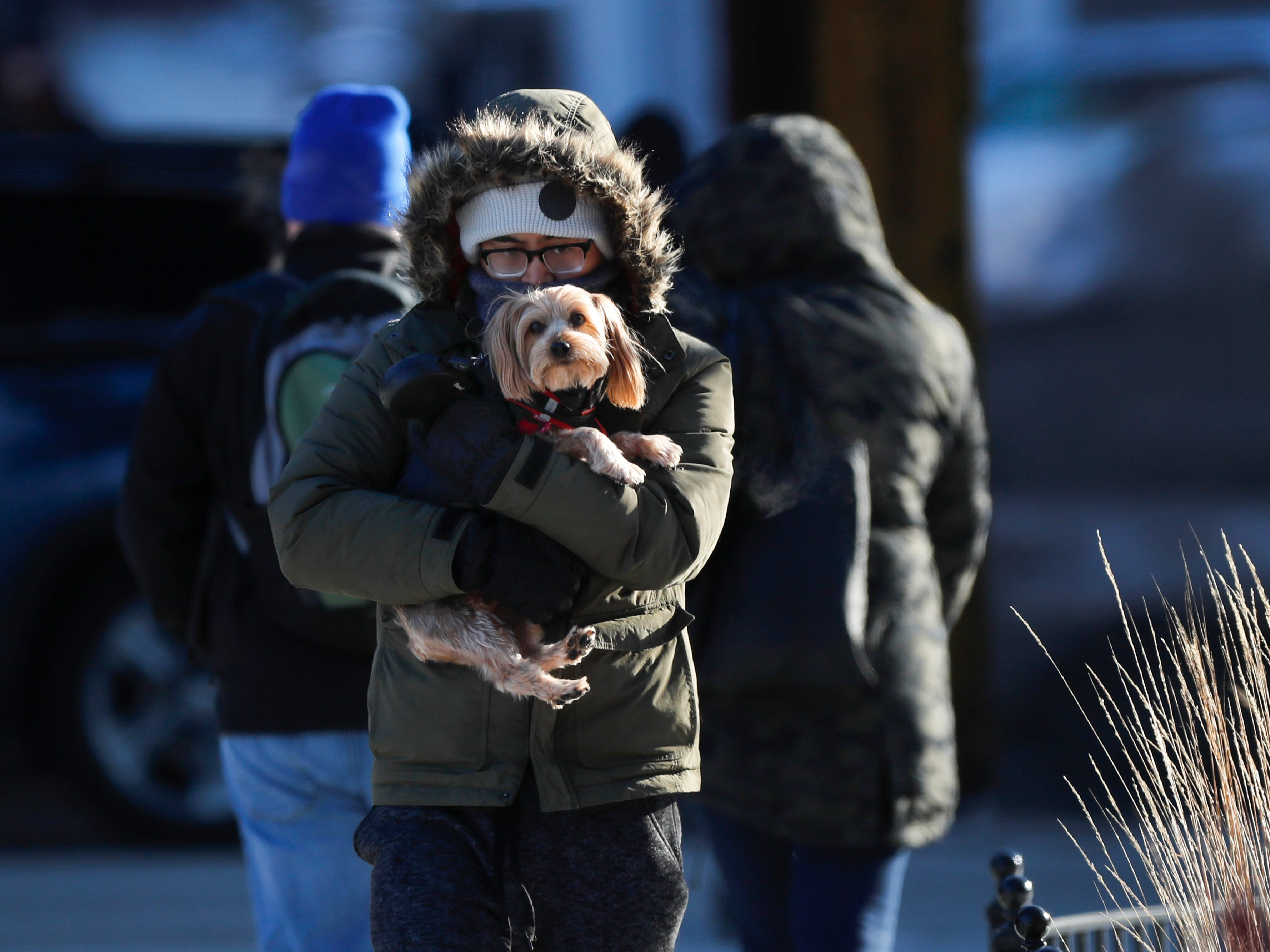 A man holds a dog as they enter a building in Chicago on a cold and frigid Jan. 25, 2019, morning.
