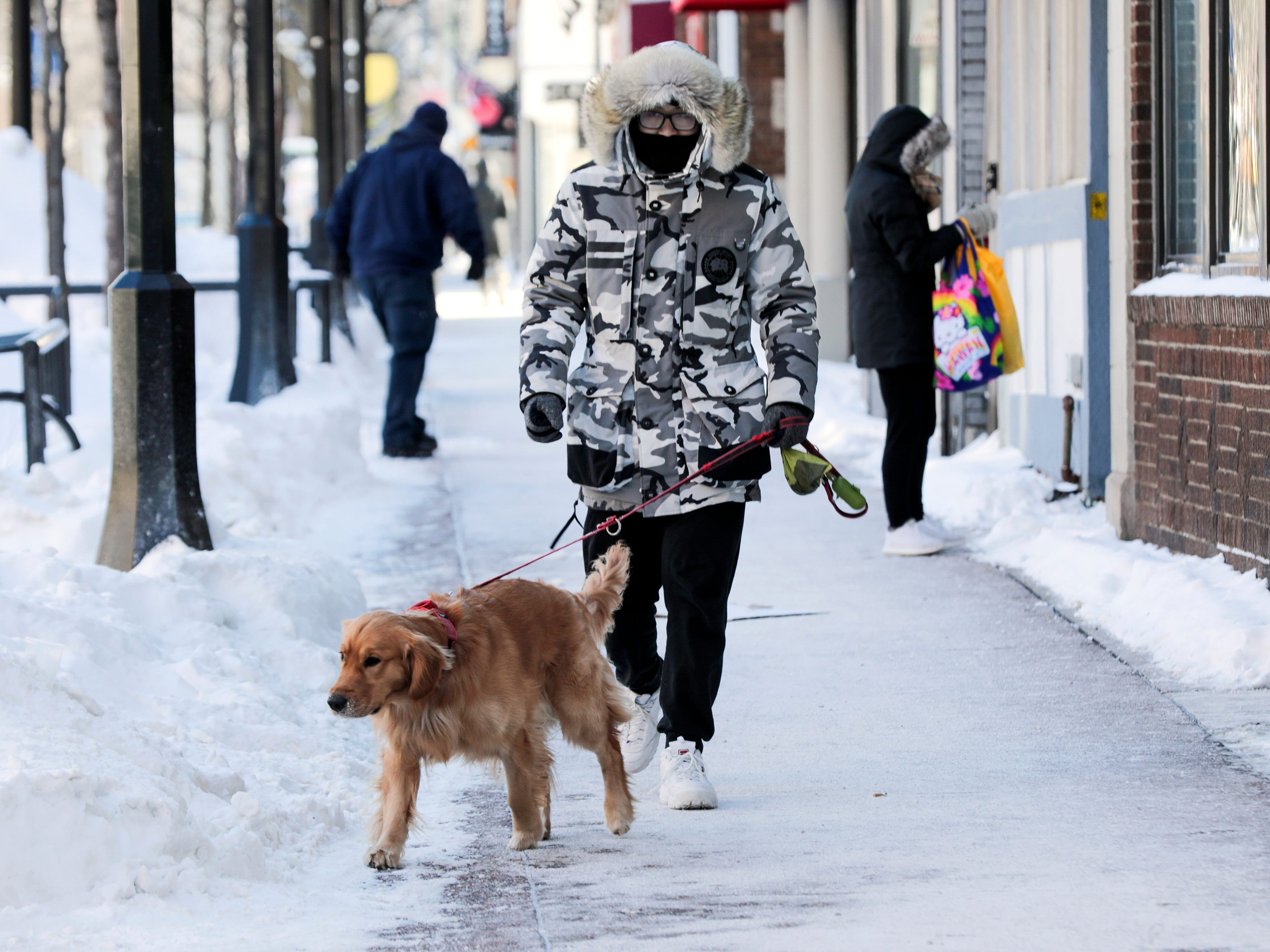 Hanji Gu takes his dog Pipixia out for a bathroom break in Madison Wis. area Jan. 30, 2019.