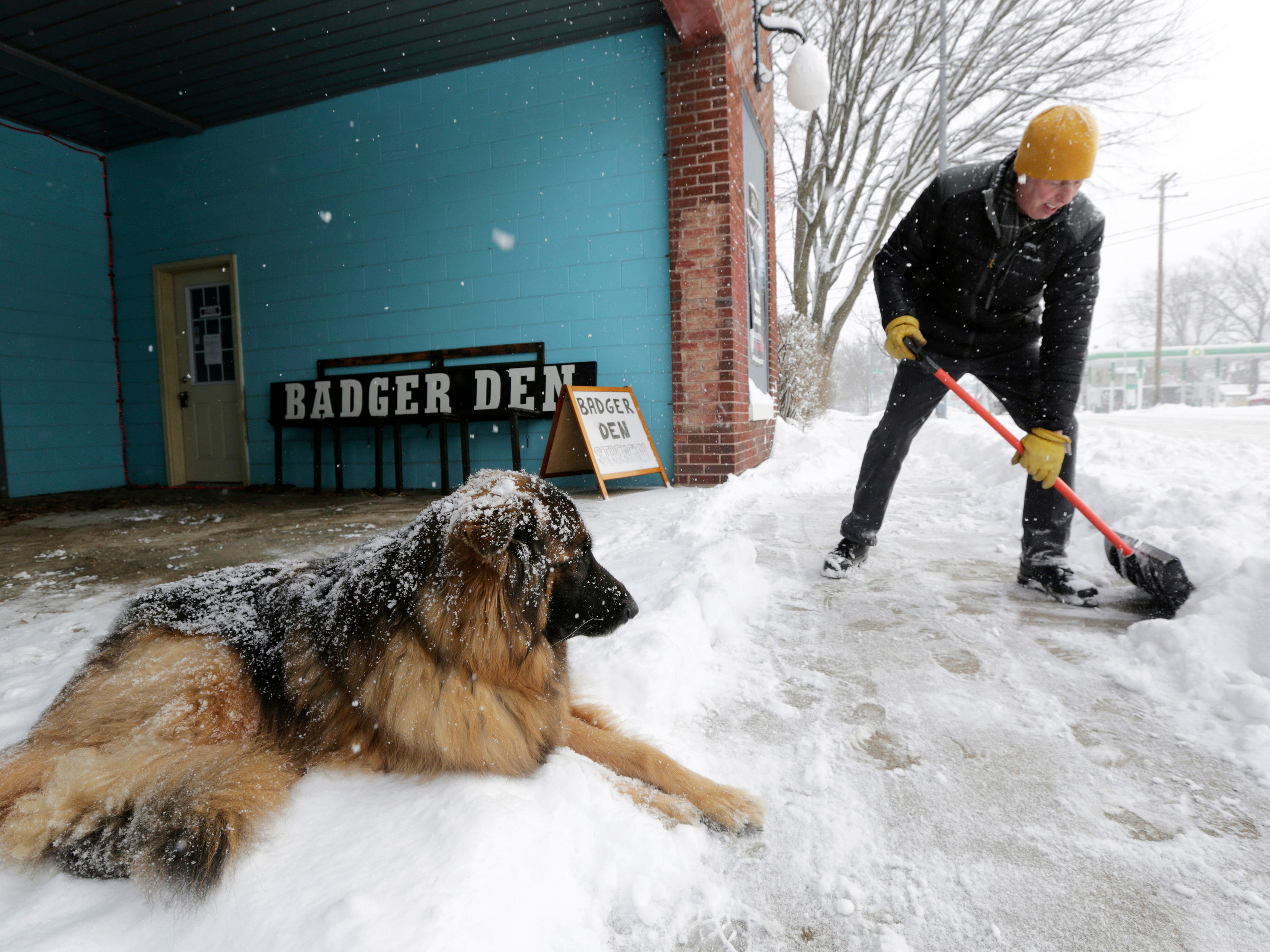 Jeff Waldman shovels the sidewalk at his Atwood Studios building as his dog, Bear, looks on during a snowstorm in Madison, Wis. on Jan. 23, 2019.