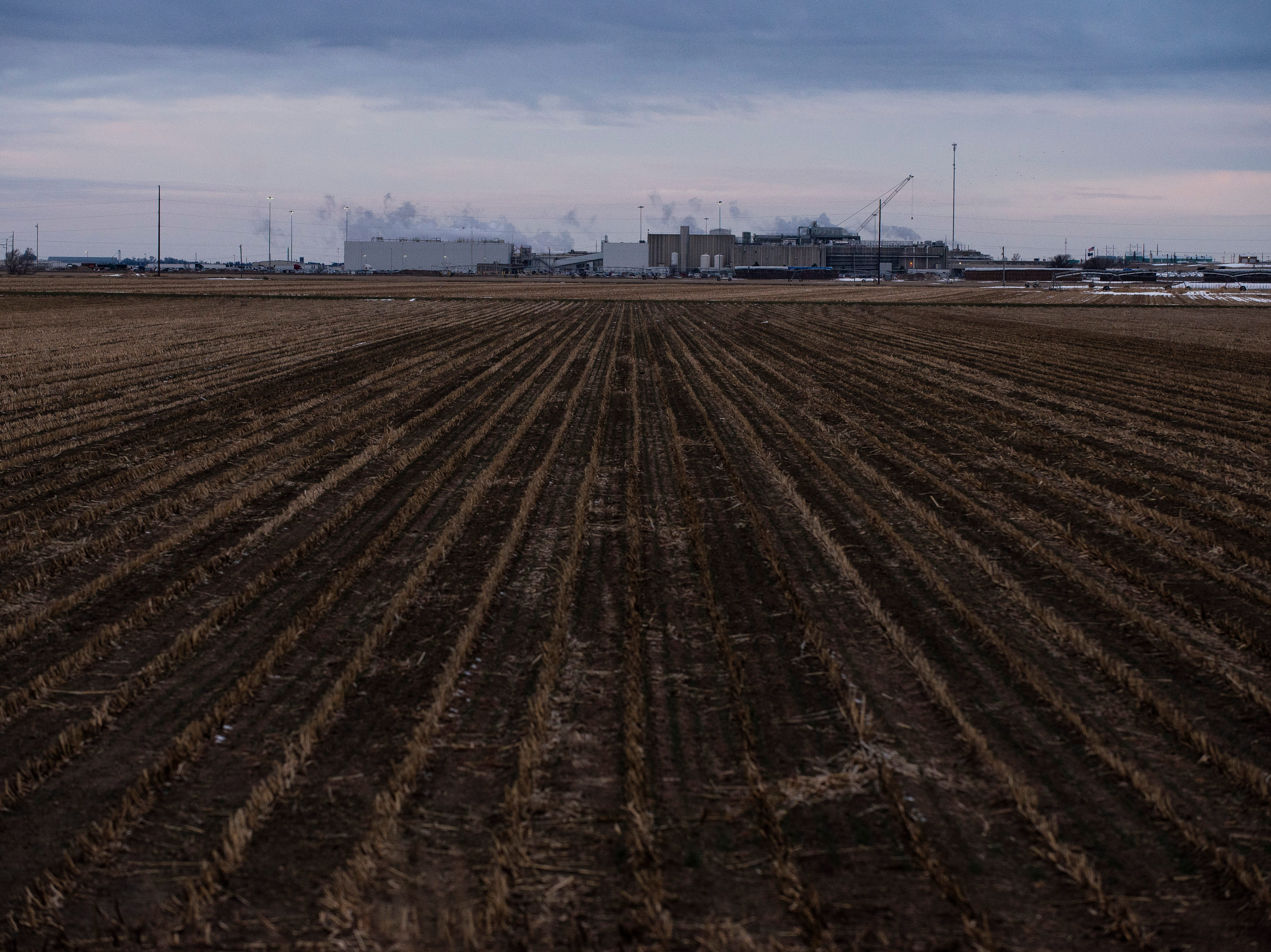 The Tyson Fresh Meats meatpacking plant, where many of the refugees living in nearby Garden City work, sits in the middle of a field Thursday, Jan. 24, 2019. The community's makeup these days is driven primarily by the work at the nearby Tyson Fresh Meats plant, where thousands of cows a day get turned into hamburger, steak and a wide variety of other beef products. Running six days a week, the plant demands a massive workforce to power its two shifts as cows are killed, skinned and sawn into smaller pieces.