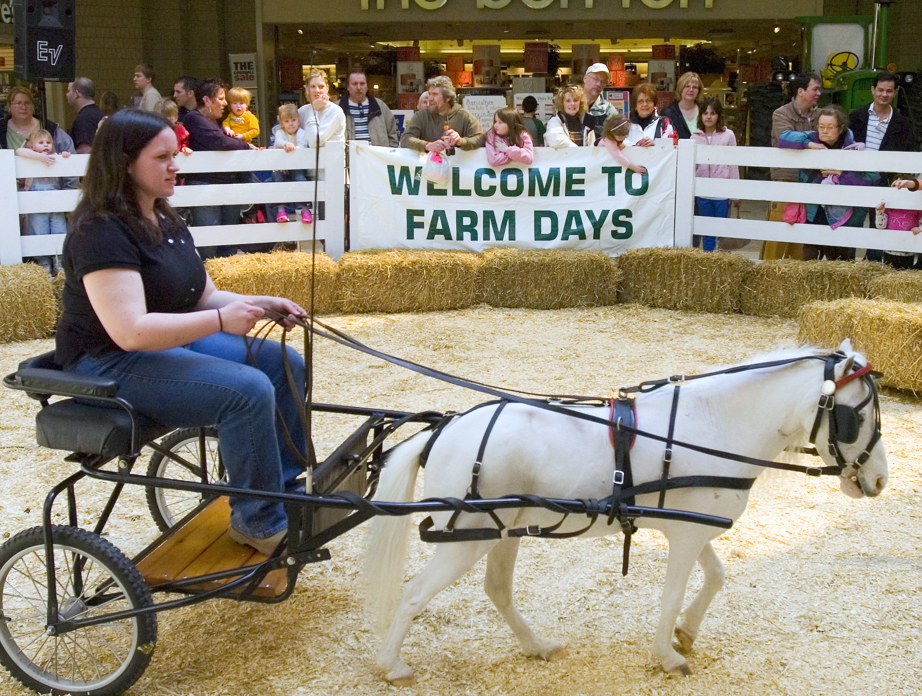 "Karen Mathewson of Owego demonstrates how to drive a miniature horse with ""Spitsy"" during farm days at the Oakdale Mall in Johnson City on Sunday on April 6, 2008."