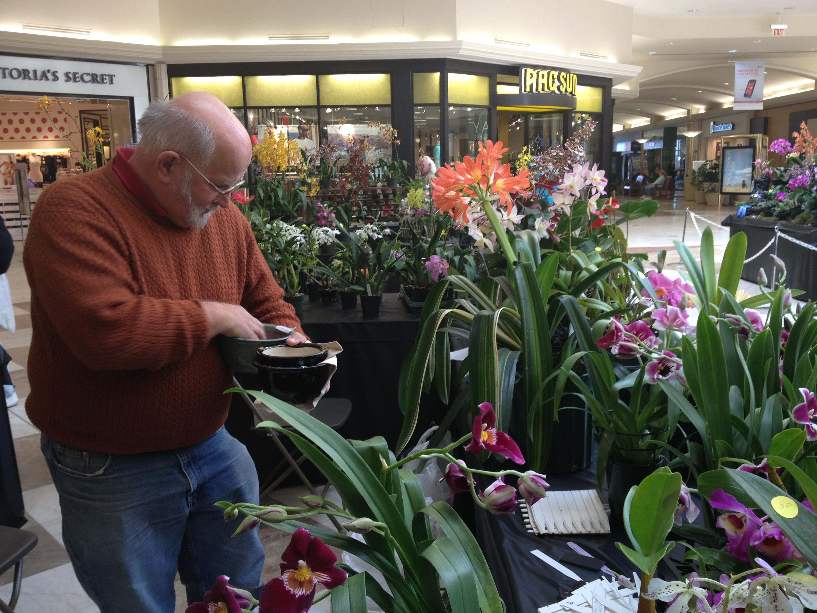 Paul Sheetz, owner of JustPat Orchids, brings out more plant holders for buyers at the Orchid Show in the Oakdale Mall on April 21, 2013.