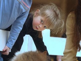 Jenna Metritikas, 4, of Apalachin, leans for a better look at Kinder as the miniature horse and handler Nicole Paterson of Chenango Forks greeted visitors to the Broome & Tioga Farm Days held at Oakdale Mall on March 14, 2004. Kinder collected a treat from Paterson as young hands reach out for him.