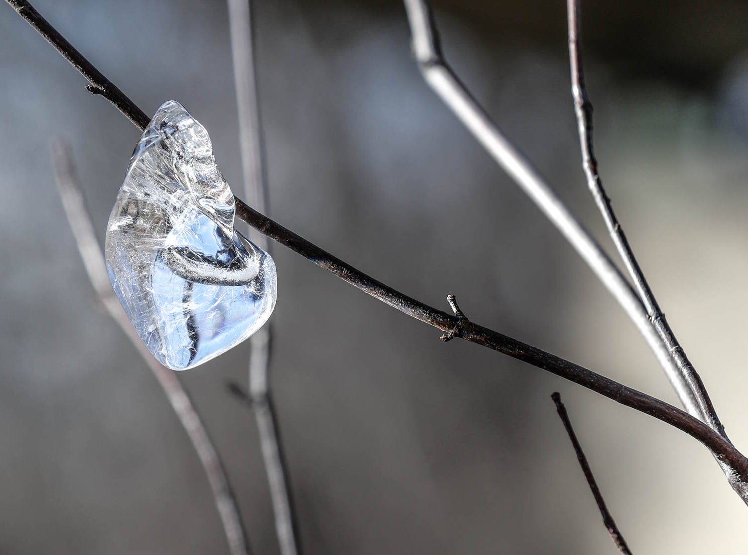 Ornaments of ice hang five to six feet off the ground in near sub-zero temperatures along the White River inside Friedman Park in Indianapolis on Thursday, Jan. 31, 2019. The ice formations indicate where high water was frozen when the river was up during sub-zero temps in previous days.