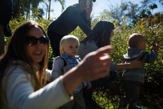 Asher McCabe watches the butterfly release with his mother Sabrina McCabe at the Everglades Wonder Gardens in Bonita Springs on January 29, 2019. 100 butterflies were released to celebrate the commencement of construction of the Ernie & Sandie Schaub Butterfly and Orchid Pavilion.