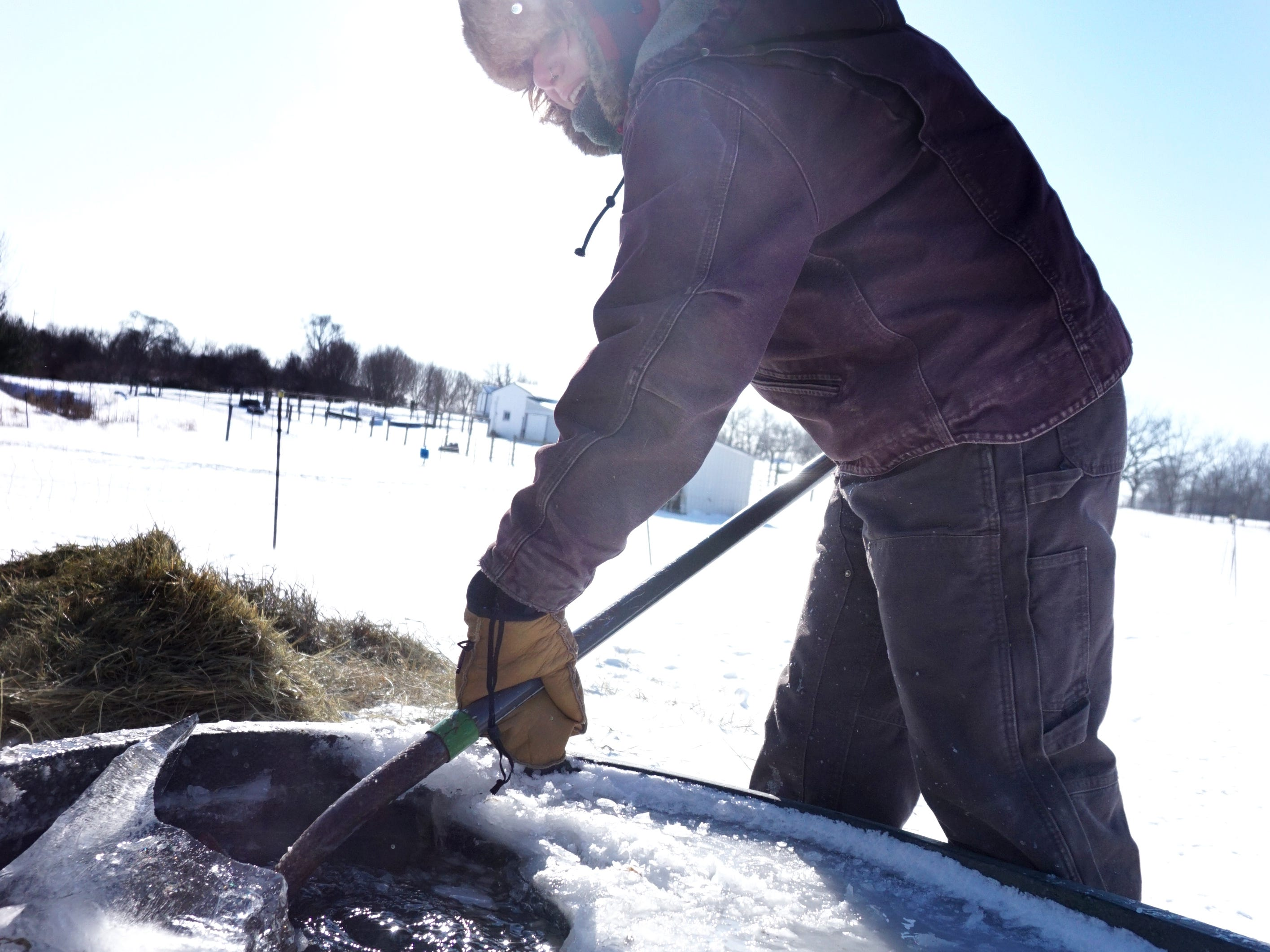 Tollgate Farms livestock manager Sam Stokes breaks up ice on an outdoor water trough at the MSU educational center in Novi on Jan. 30. Stokes was outside a few times that day to make sure animals had enough hay and water to keep them going in the extreme cold. At the time this photo was taken it was about 1 degree above zero with a wind chill of minus 20 degrees below zero.