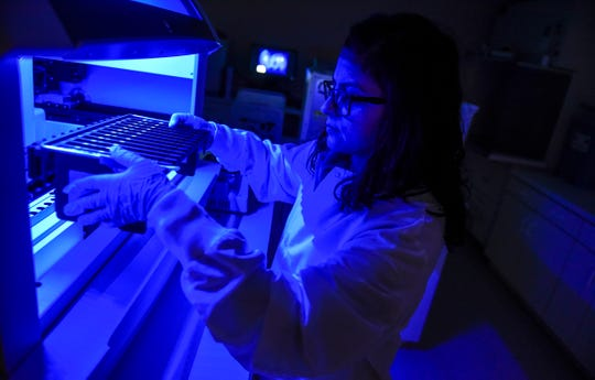 Molecular Research and Development Associate Sonam Sahni loads some material into a machine for testing under colored light Friday, Jan. 25, at Microbiologics in St. Cloud.