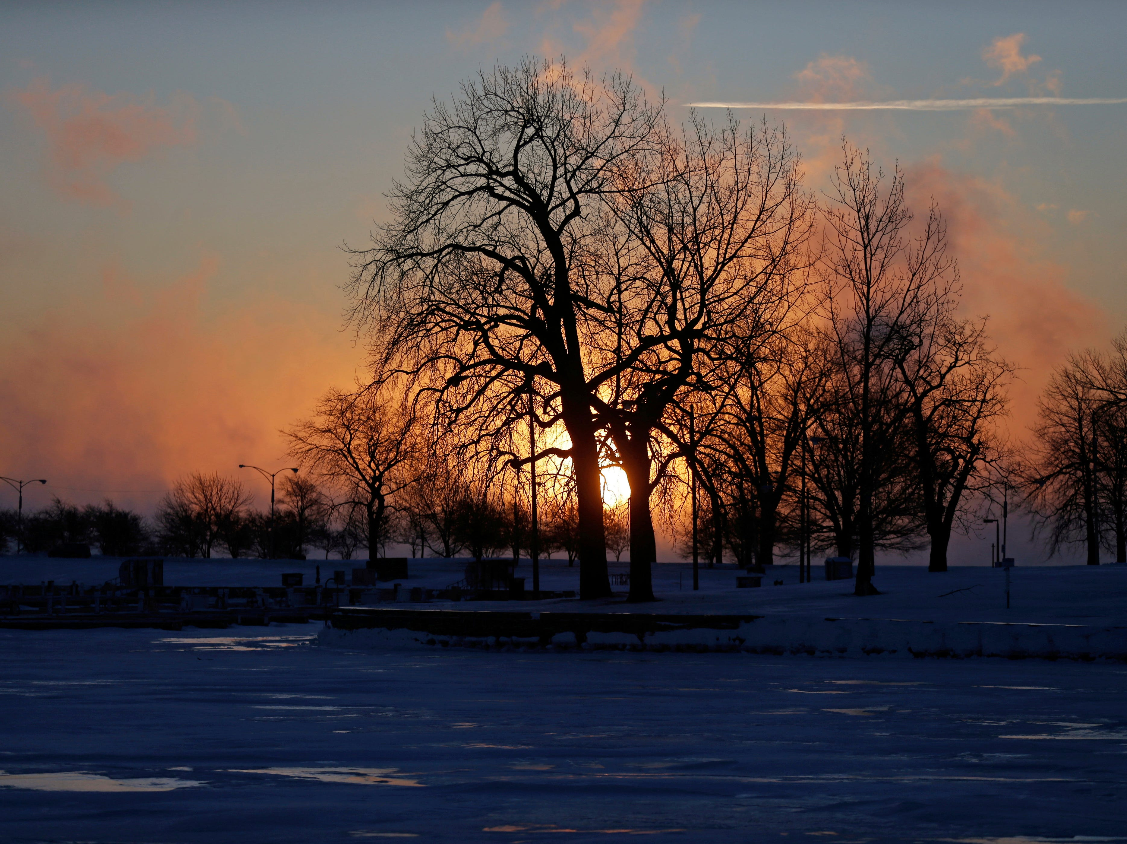 The sun rises behind trees along the shore of Lake Michigan at Montrose Harbor, Thursday, Jan. 31, 2019, in Chicago. The painfully cold weather system that put much of the Midwest into a historic deep freeze was expected to ease Thursday, though temperatures still tumbled to record lows in some places.