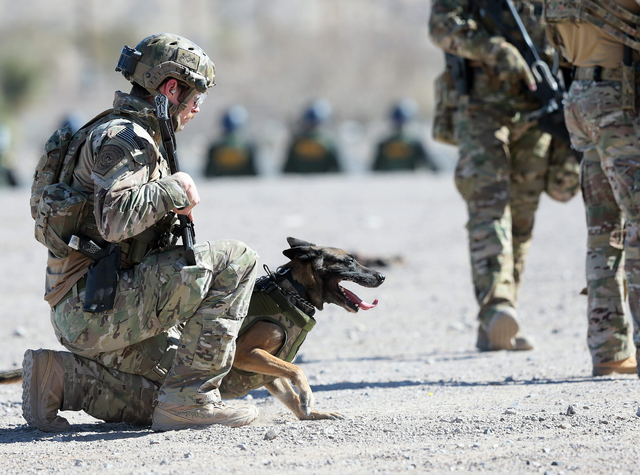 A dog takes part as Border Patrol agents join forces with ICE and U.S. Customs and Border Protection's Air and Marine Operations in a training exercise Thursday, Jan. 31, 2019, along the border fence in Anapra, New Mexico. The training is preparation for any border surge that might occur.