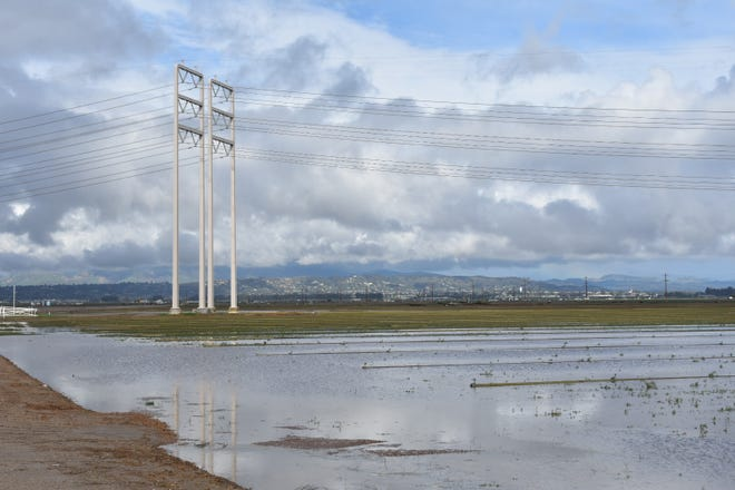 Farm fields at the corner of Las Posas Road and Hueneme Road were flooded by Thursday's storm.