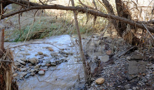 Territory along the Ventura River is part of a new land-use zone with protections to allow passage of wildlife so the animals can find food, mates and shelter in the urbanized county.  This photograph shows the water running earlier this year near Foster Park in the Ventura area.