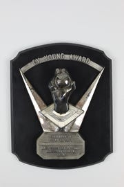 Denny McLain's 1969 Cy Award is up for auction. McLain helped the Detroit Tigers win the World Series in 1968.