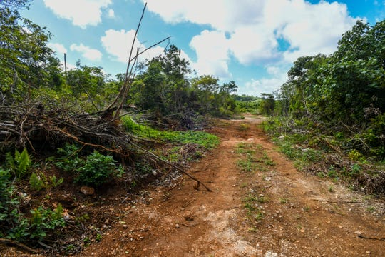 A dirt road cuts through the overgrown jungle area, across the street from McDonald's in Tamuning, on Friday, Feb. 1, 2019.