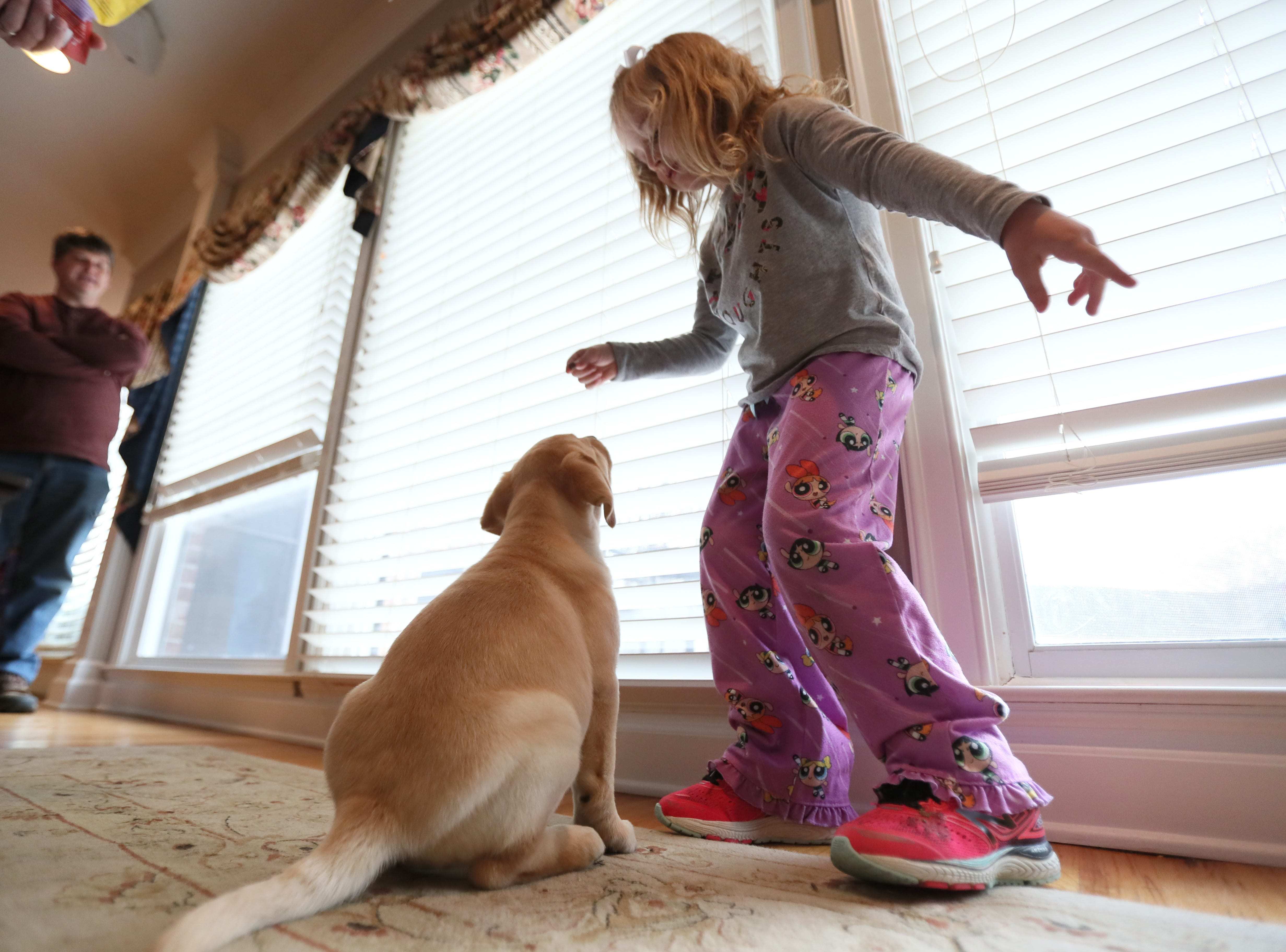 Ava Reed, 6, plays with her new puppy Maggie at the family's Arlington home on Friday, Feb. 1, 2019. Ava received Maggie, who though only eight weeks old, is going through training from Jeff Tawater, left, the executive director of K9 Direction, to be her service animal after an outpouring of community support helped raise the over $10,000 required for her training and equipment.
