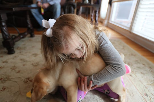 Ava Reed, 6, plays with her new puppy Maggie at the family's Arlington home on Friday, Feb. 1, 2019. Ava received Maggie, who though only eight weeks old, is going through training from Jeff Tawater, the executive director of K9 Direction, to be her service animal after an outpouring of community support helped raise the over $10,000 required for her training and equipment.