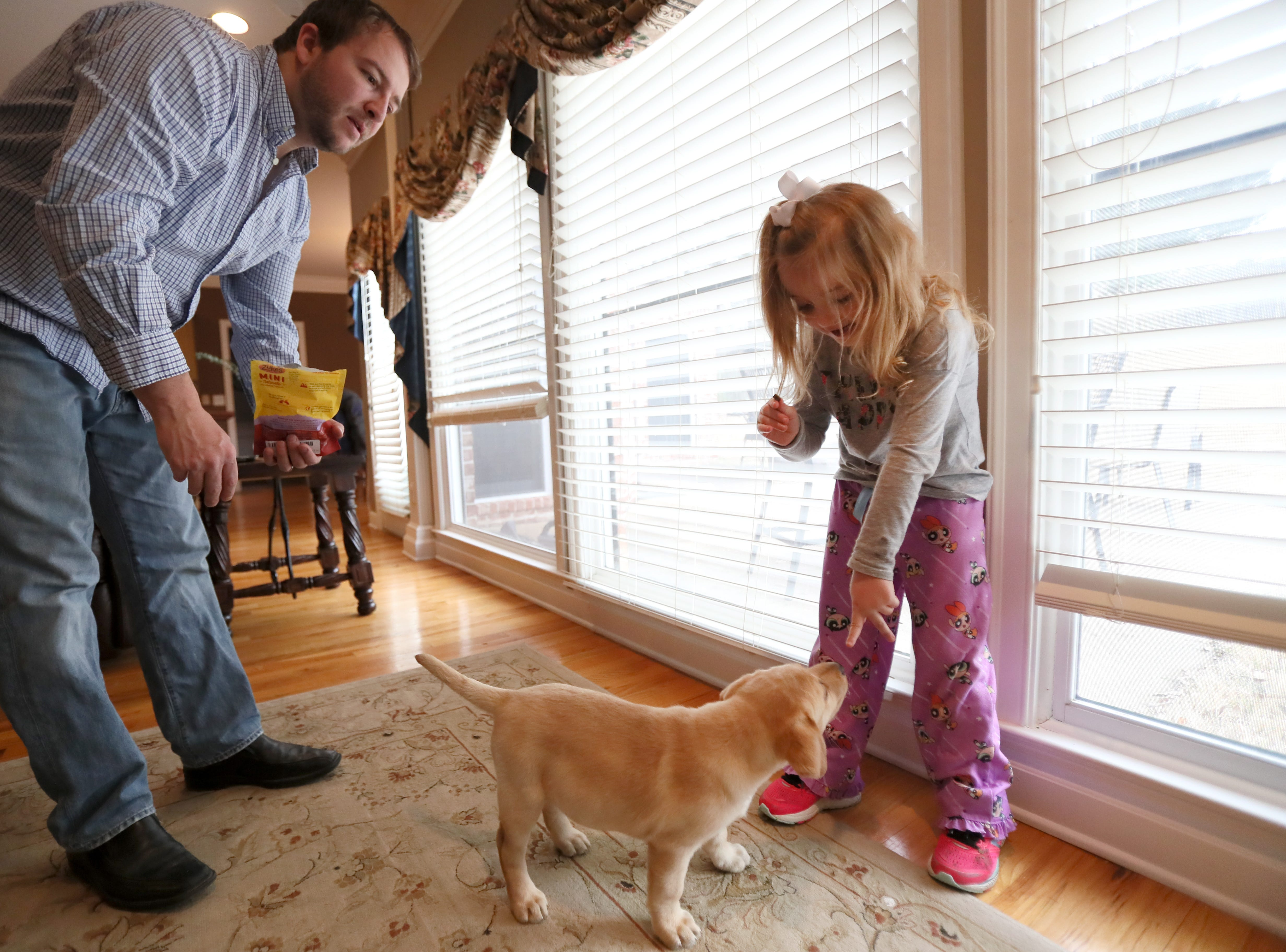 Ava Reed, 6, plays with her new puppy Maggie as her father Jimmy Reed watches, at the family's Arlington home on Friday, Feb. 1, 2019. Ava received Maggie, who though only eight weeks old, is going through training from Jeff Tawater, the executive director of K9 Direction, to be her service animal after an outpouring of community support helped raise the over $10,000 required for her training and equipment.
