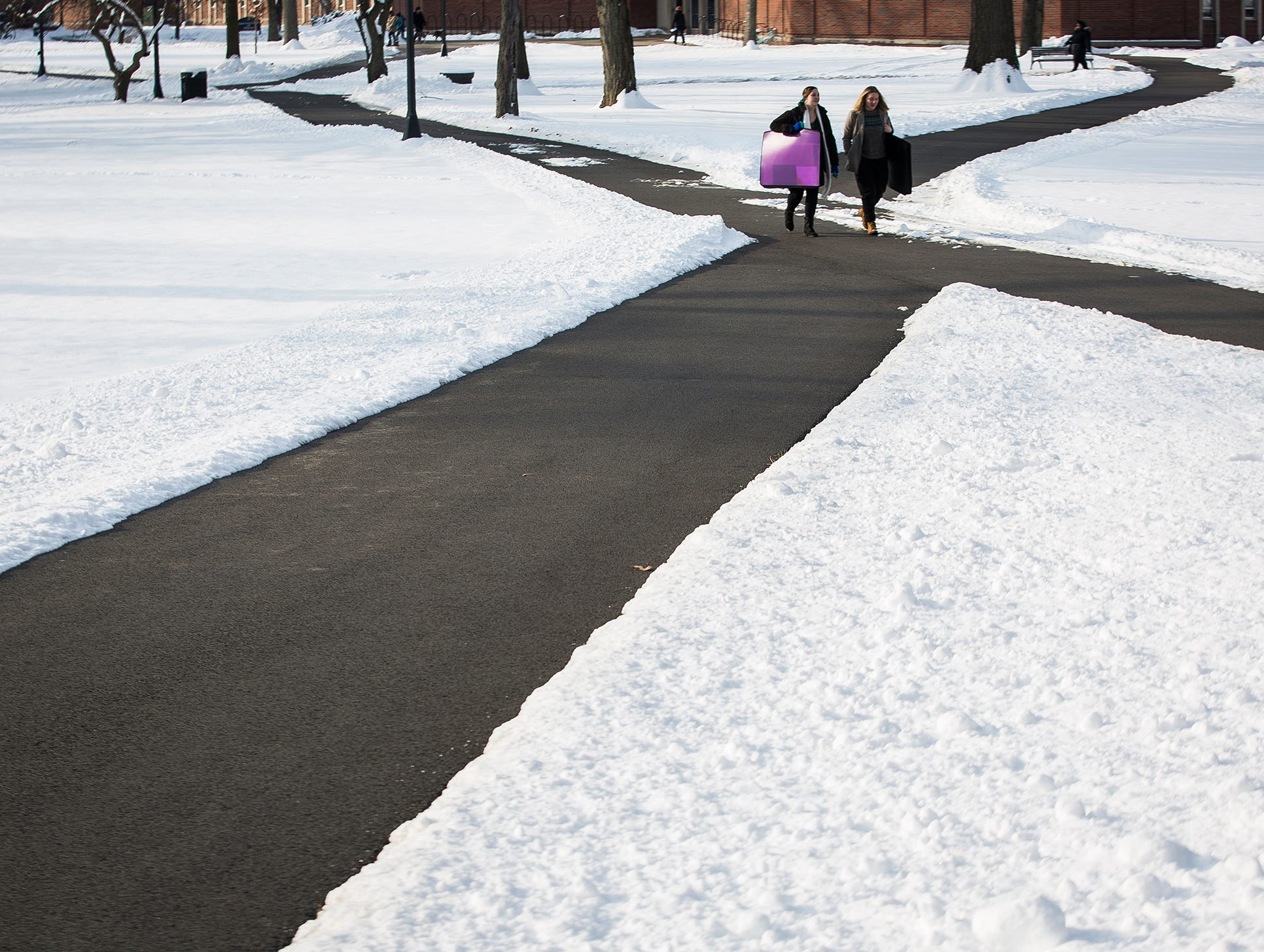 Snow blanketed Delaware County Thursday night causing school closings Friday.