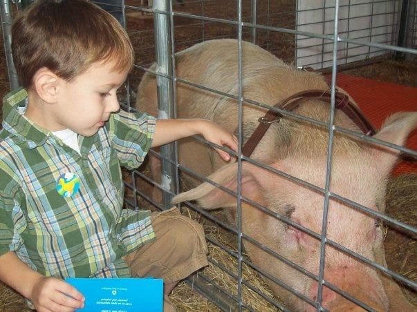 Alden DeGennaro pets Wilbur the Pig at Rutherford County Agricultural Extension's Adventures in Agriculture.
