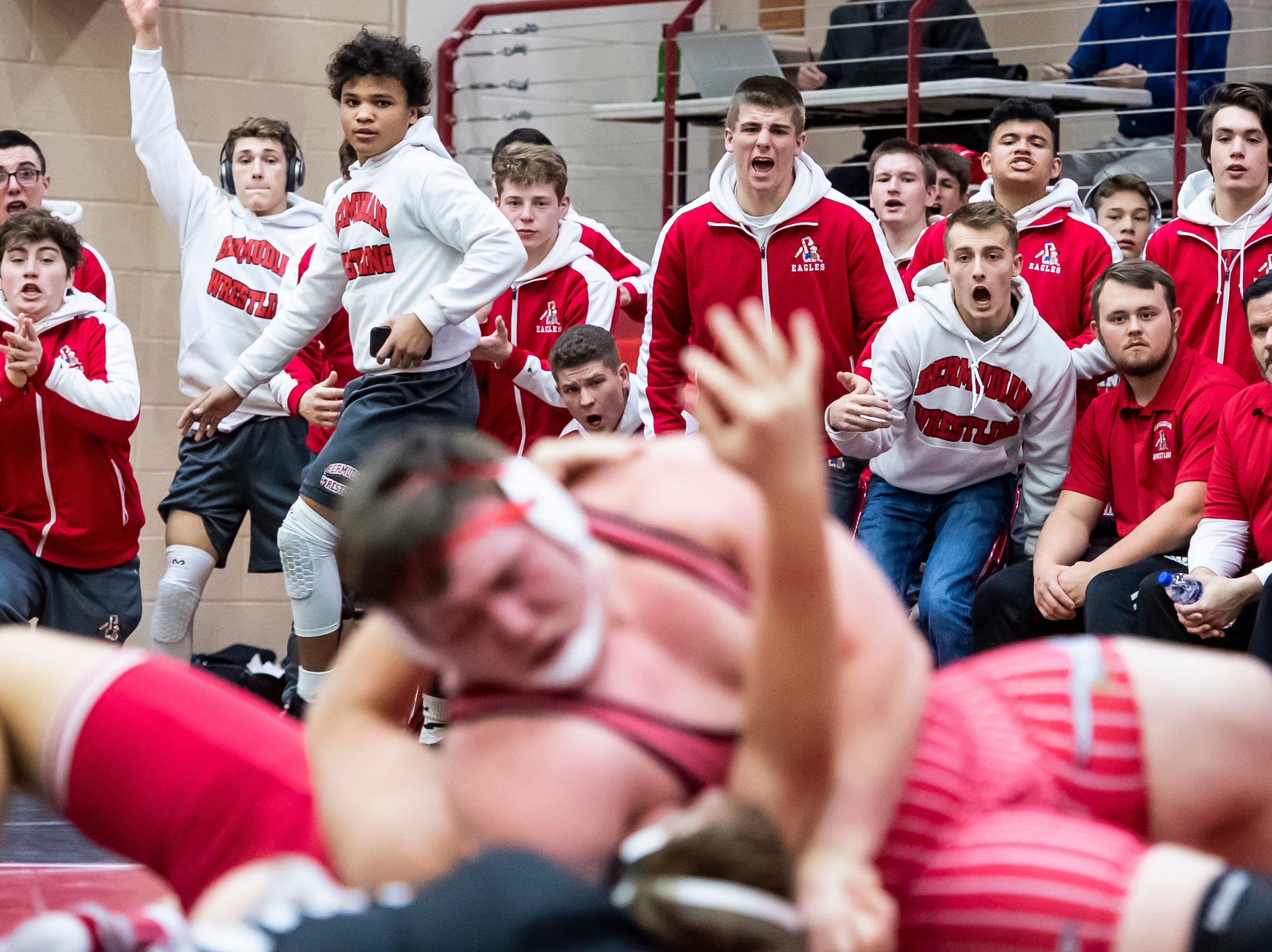 The Bermudian Springs bench reacts as Ryan Lauver gets the pin against Hamburg's Caleb Foote in a 285-pound bout during a PIAA District III 2A semifinal match at Cumberland Valley High School January 31, 2019. The Eagles fell 43-24.