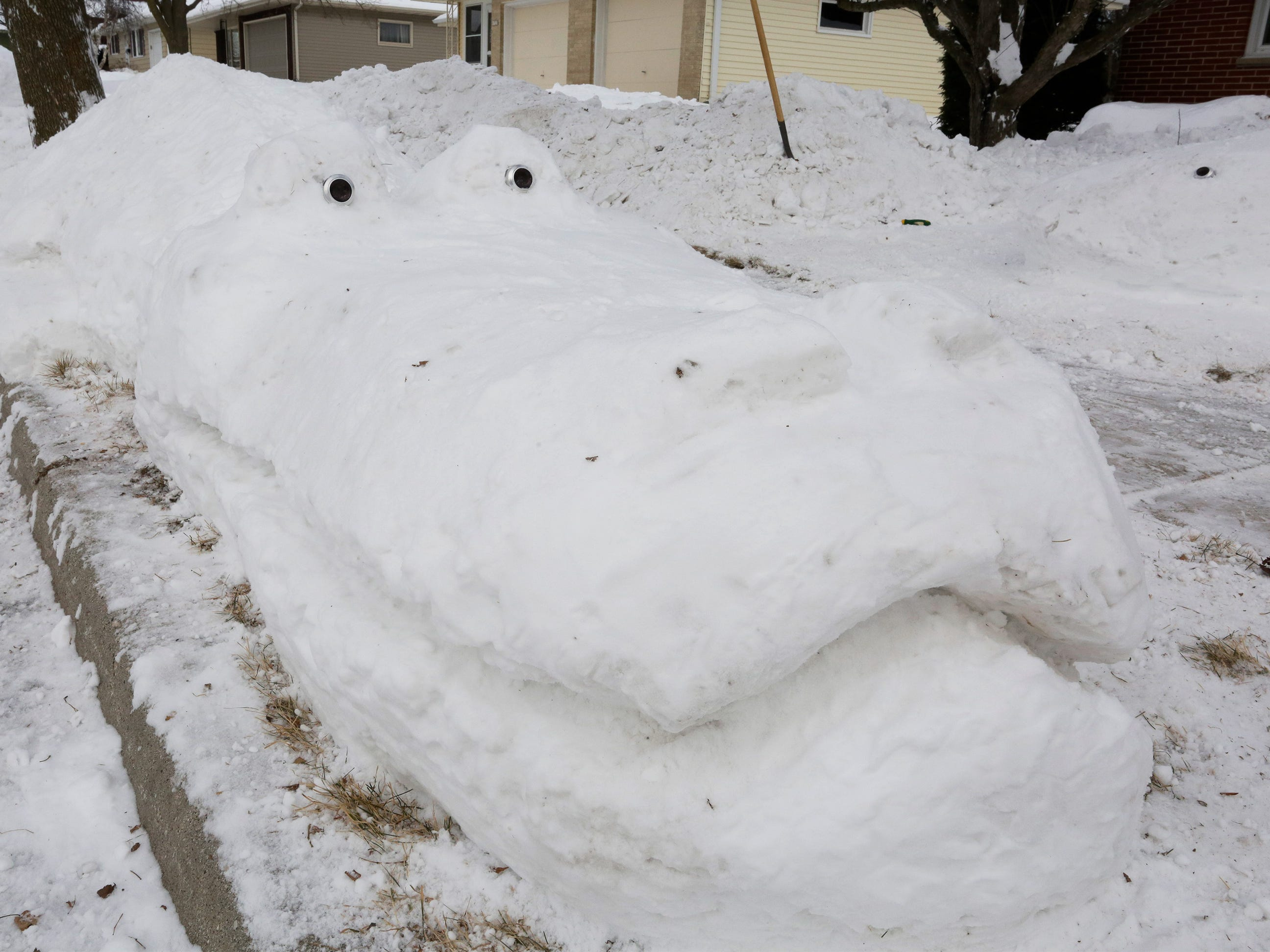 The crocodile snow sculpture by Dennis O' Neill of Sheboygan strike a pose on his front yard, Friday, February 1, 2019, in Sheboygan, Wis.