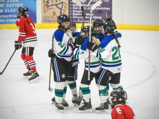 Sartell/Sauk Rapids players celebrate following a goal in the first peroid during the Thursday, Jan. 31, game against St. Cloud at Bernicks Arena in Sartell.