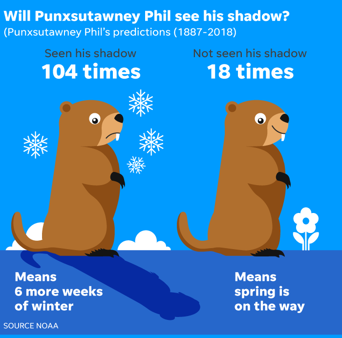 No Shadows To Be Seen On Groundhog Day >> Groundhog Day 2019 Did The Groundhog See His Shadow
