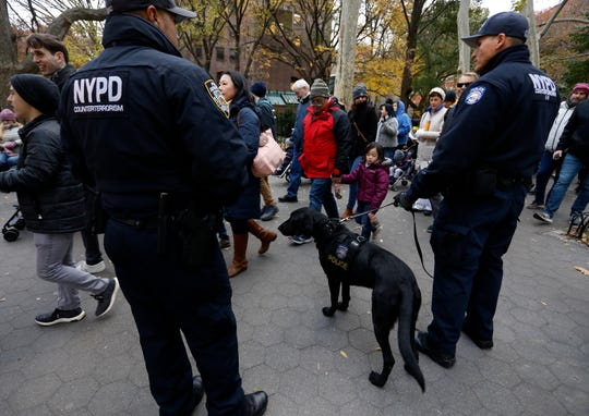 New York Police Department Counter Terrorism K-9 'Bobby' (C) keeps a watchful eye over passersby as they view the annual balloon inflation the day before the Macy's 92nd Annual Thanksgiving Day Parade in New York City, New York, November 21, 2018.