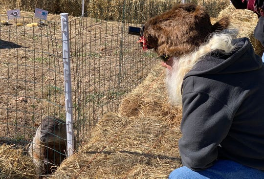 John McFadden sports a groundhog hat while looking at Greta the Groundhog after the celebration.