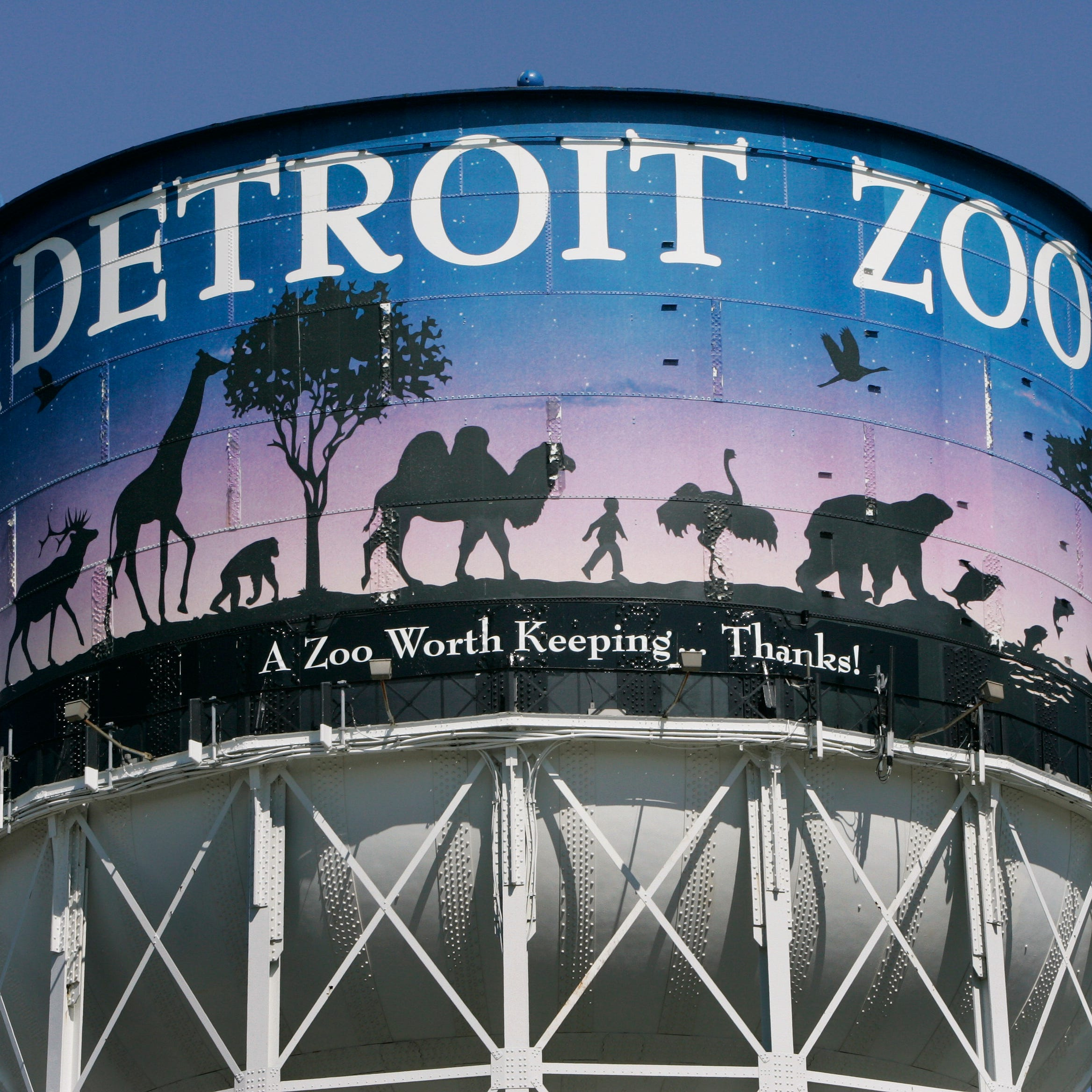 Forecast improves, Detroit Zoo animals venture outside