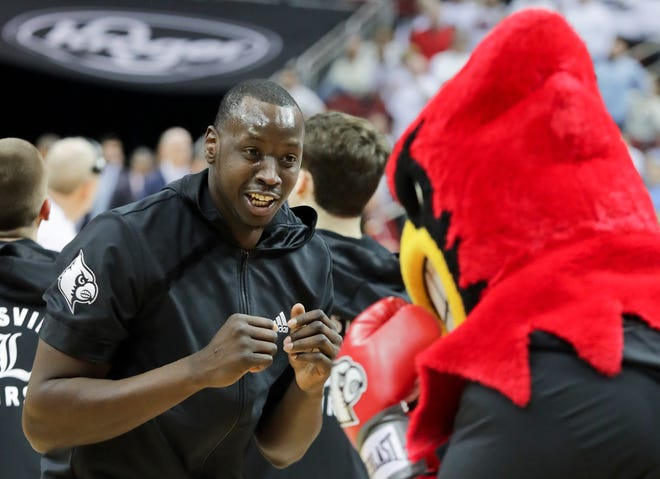 Louisville's Akoy Agau is sparring with Louie before the game. 