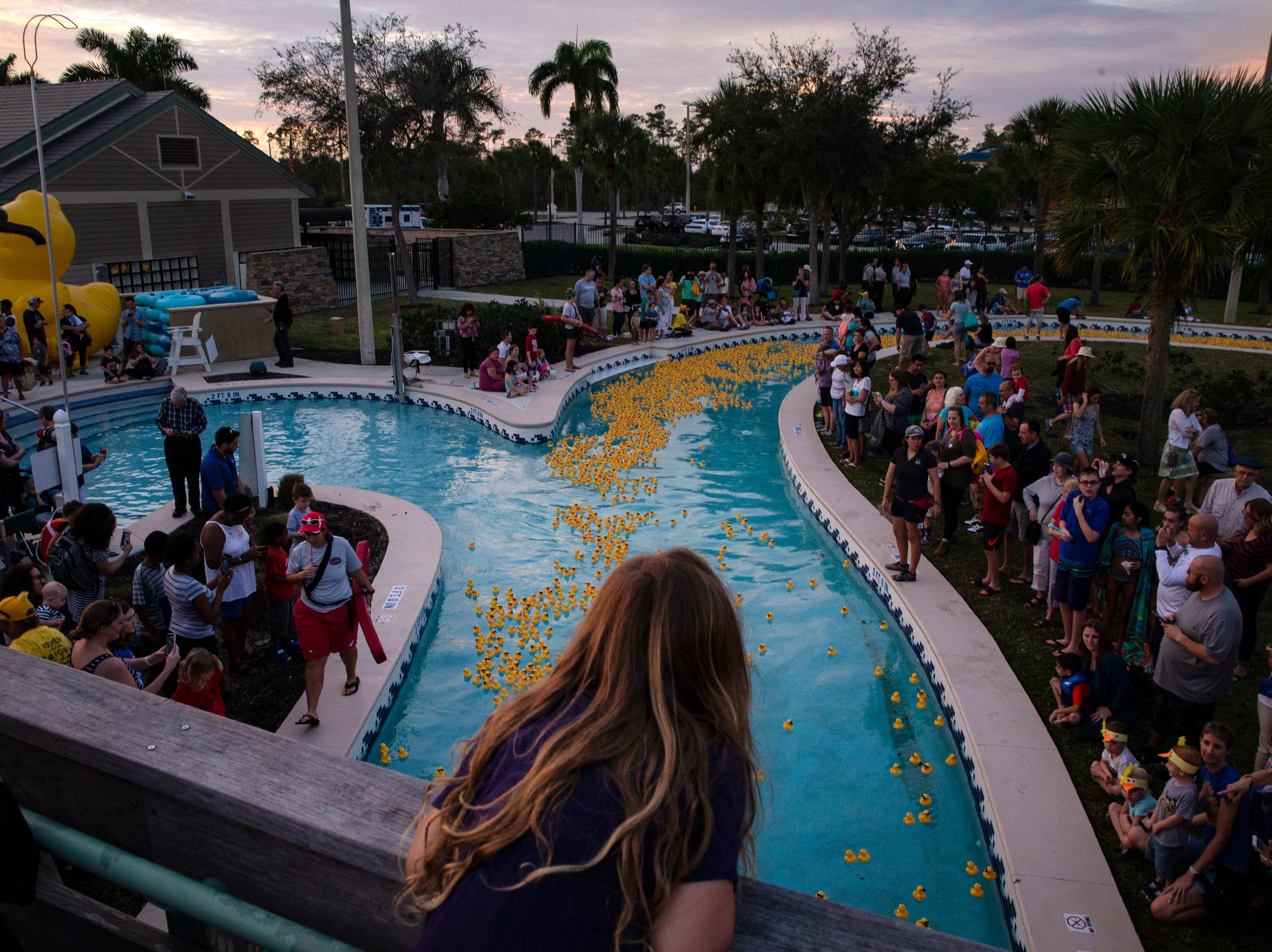 Community members look on as rubber ducks make their way around the Lazy River feature at the Sun-N-Fun Lagoon during the Great Naples Duck Race on Saturday in North Naples.