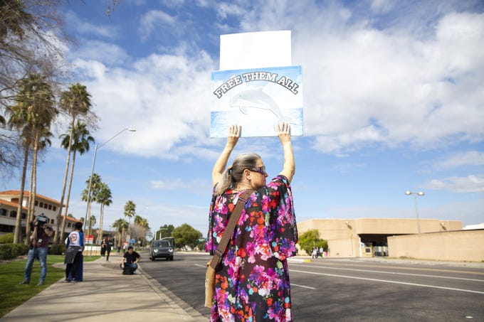 """Debra Toro holds a sign that reads """"free them all"""" at a protest against Dolphinaris at the intersection of E. Via de Ventura and N. Pima Road in Scottsdale on Feb. 2, 2019. Toro drove to Scottsdale from Las Vegas with friends to attend the protest."""