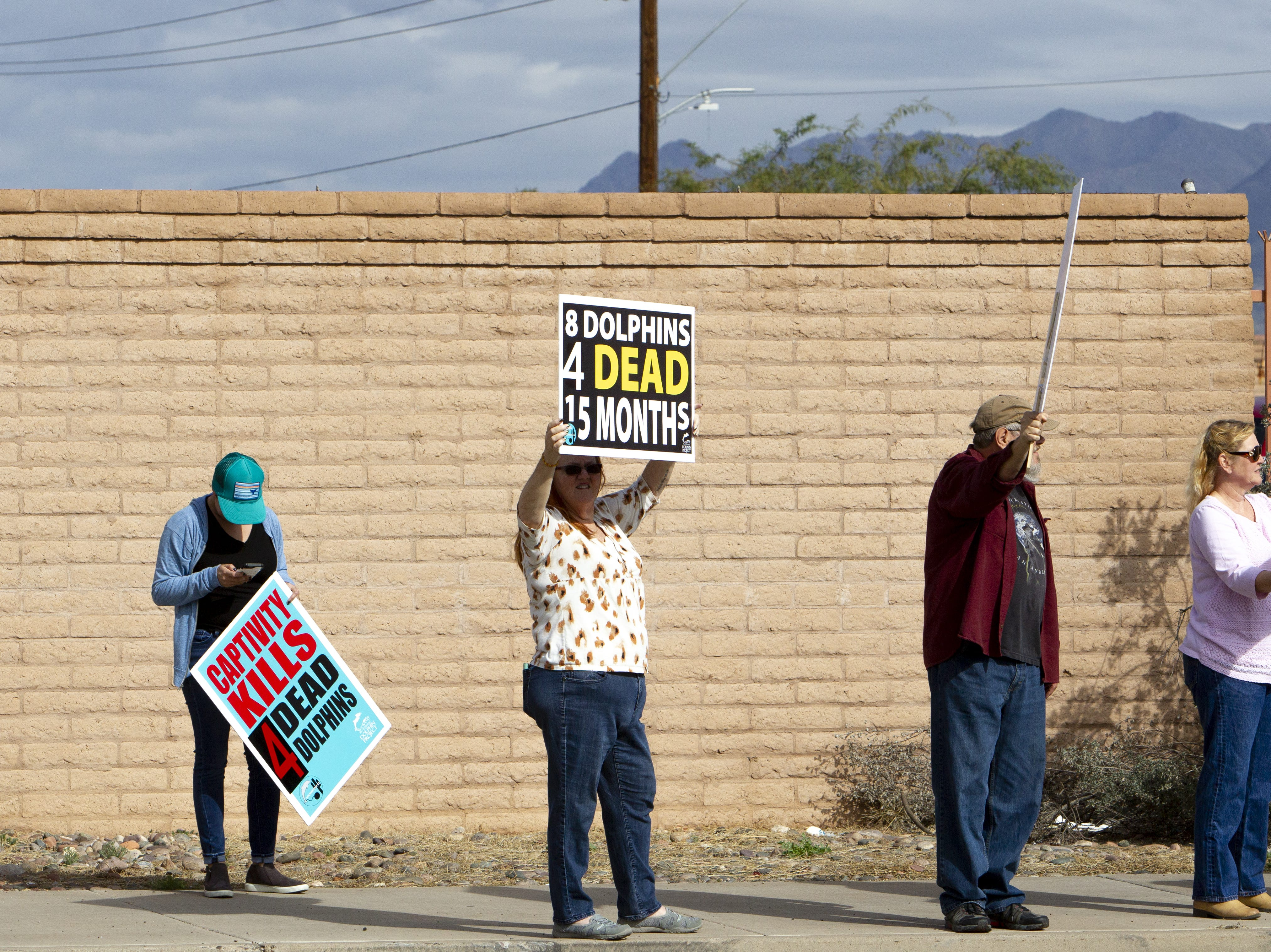 Dolphinaris protesters line both sides of N. Pima Road at a protest against Dolphinaris in Scottsdale on Feb. 2, 2019. The protest was prompted by four dolphin deaths in less than two years.