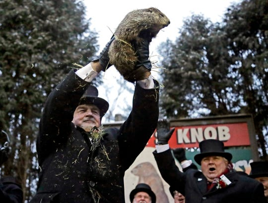 Groundhog Club co-handler John Griffiths holds Punxsutawney Phil, the weather prognosticating groundhog, during the 133rd celebration of Groundhog Day on Gobbler's Knob in Punxsutawney on Saturday. Phil's handlers said that groundhog has forecast an early spring.