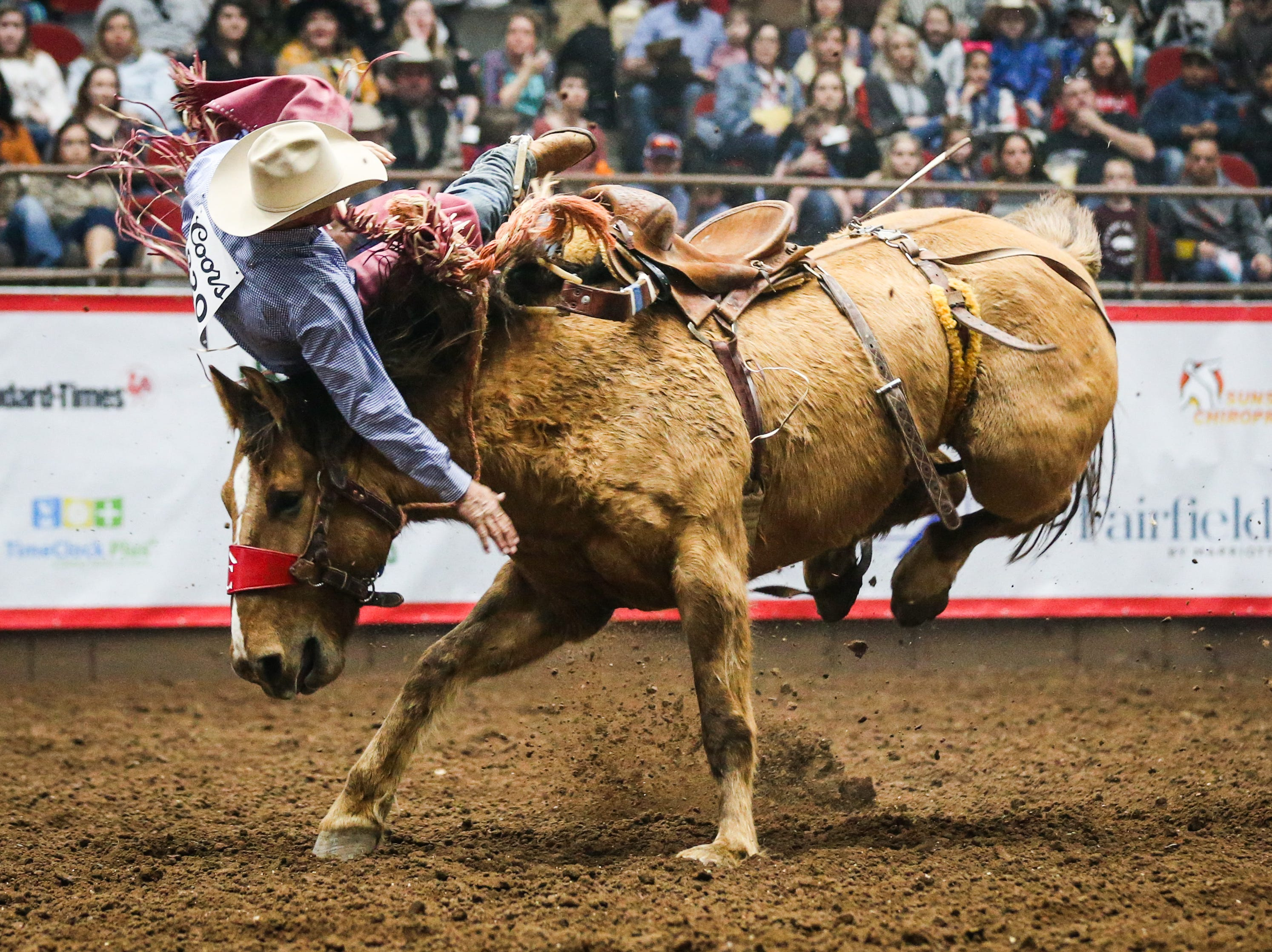 Leland Wood is thrown off in saddle bronc riding during the 2nd performance of the San Angelo Stock Show & Rodeo  Saturday, Feb. 2, 2019, at Foster Communications Coliseum.