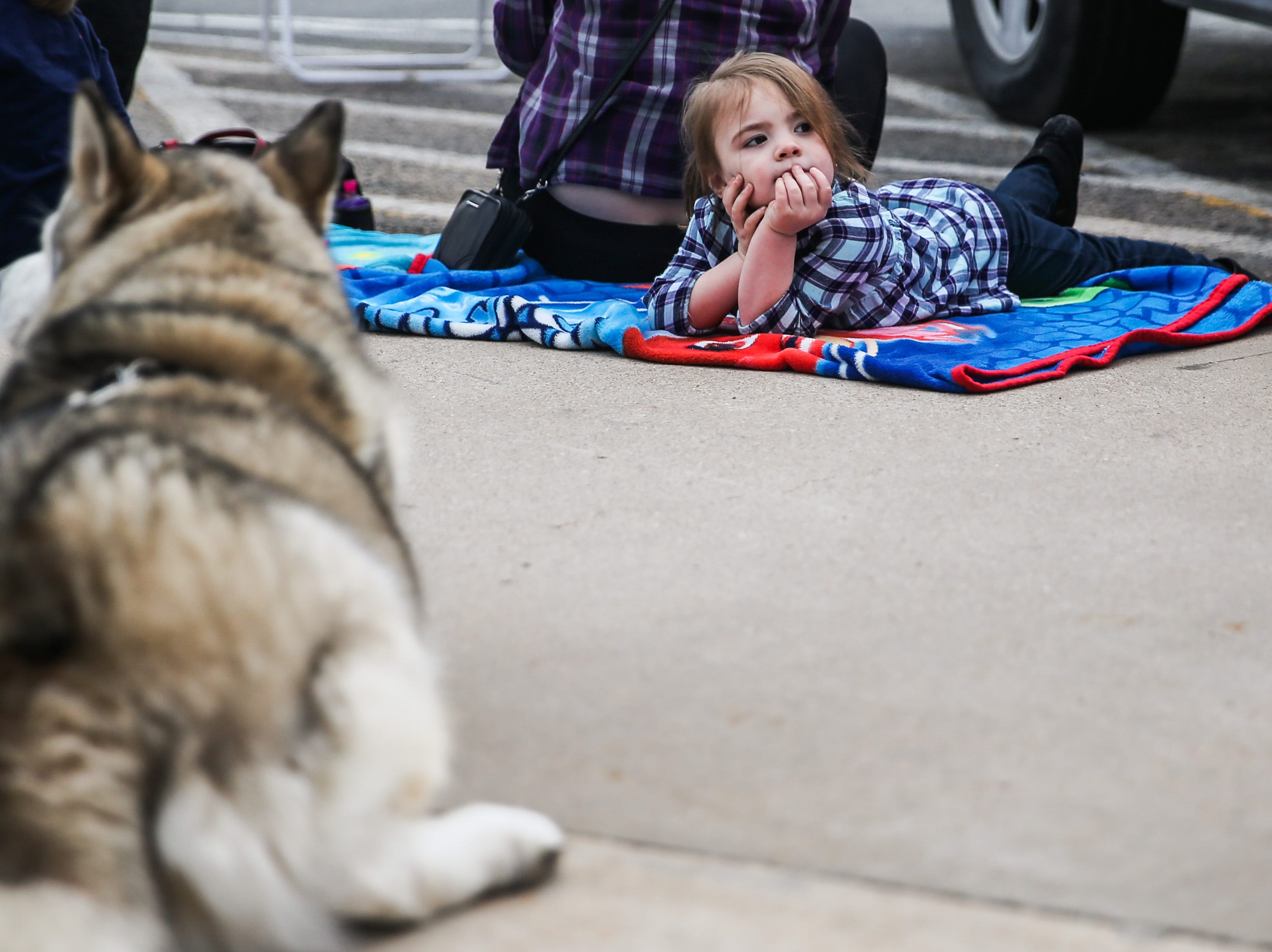 Hailey Stewart, 3, waits for the San Angelo Stock Show and Rodeo Parade to start Saturday, Feb. 2, 2019, in downtown San Angelo.