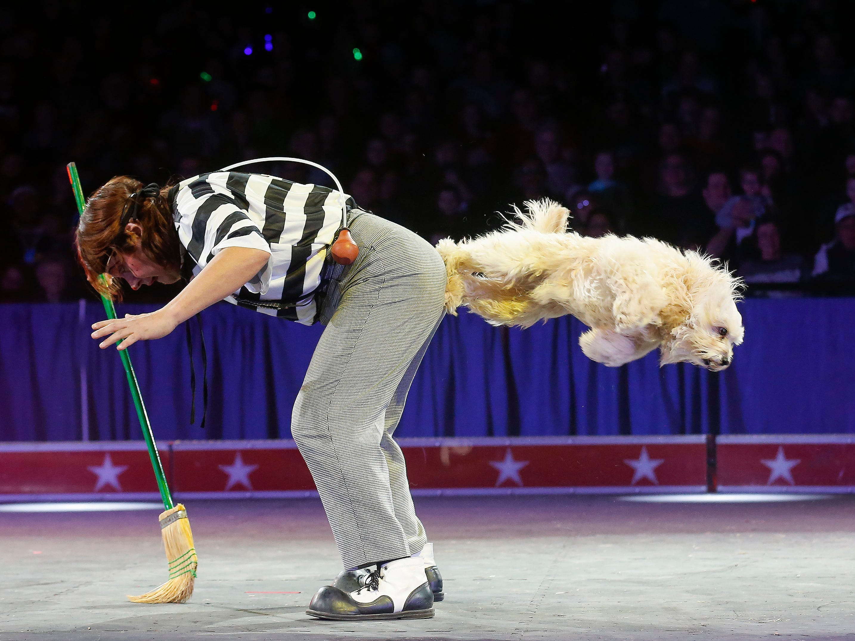 Scenes from opening night of the Carden Circus at JQH Arena on Friday, Feb. 1, 2019.