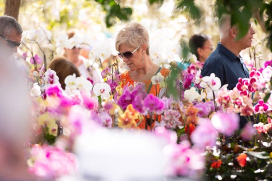 The 19th annual GardenFest! is 9 a.m. to 5 p.m. Saturday and 9 a.m. to 4 p.m. Sunday at Riverside Park, 3250 Riverside Park Drive, Vero Beach. It features more than 85 vendors selling plants, flowers, orchids, trees, pottery, furniture, fountains and garden art.