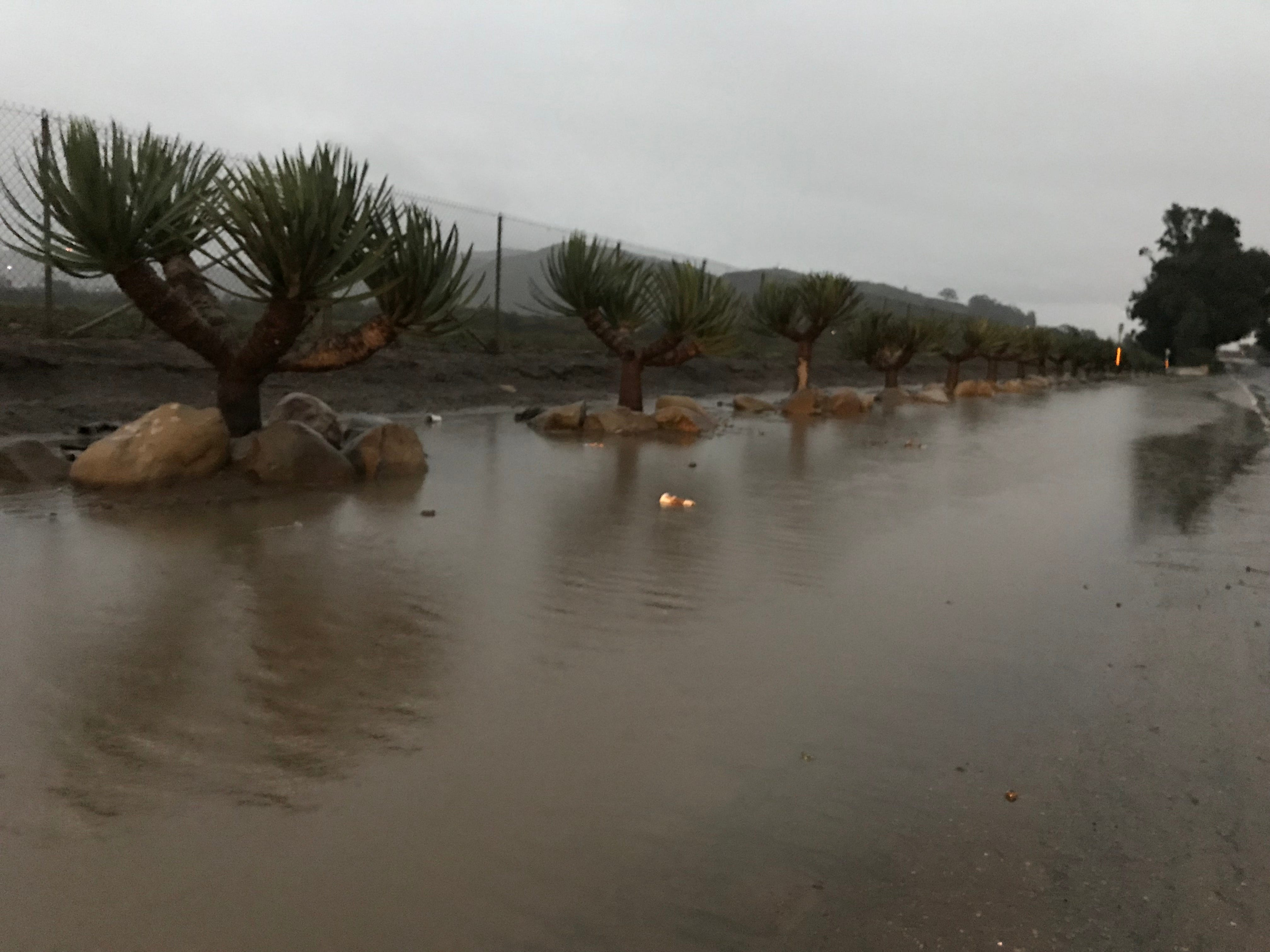 Water pooled near the 800 block of west Main Street in Ventura at sunrise Saturday as a storm system moved into the region.