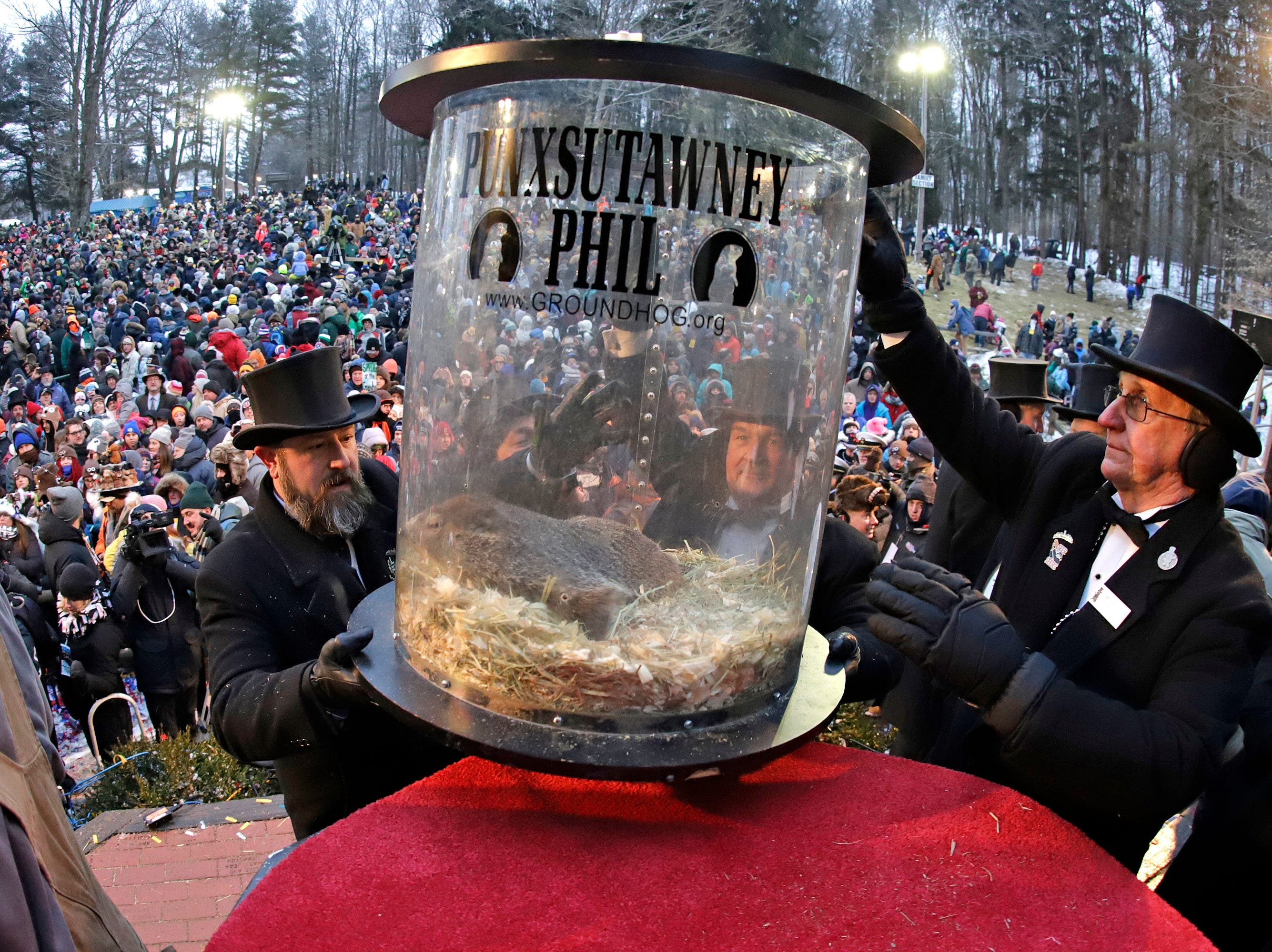 Groundhog Club co-handler Al Dereume, left, is help by Ron Ploucha, right, as they lift Punxsutawney Phil, the weather prognosticating groundhog, in his carrying capsule, during the 133rd celebration of Groundhog Day on Gobbler's Knob in Punxsutawney, Pa. Saturday, Feb. 2, 2019. Phil's handlers said that the groundhog has forecast an early spring.