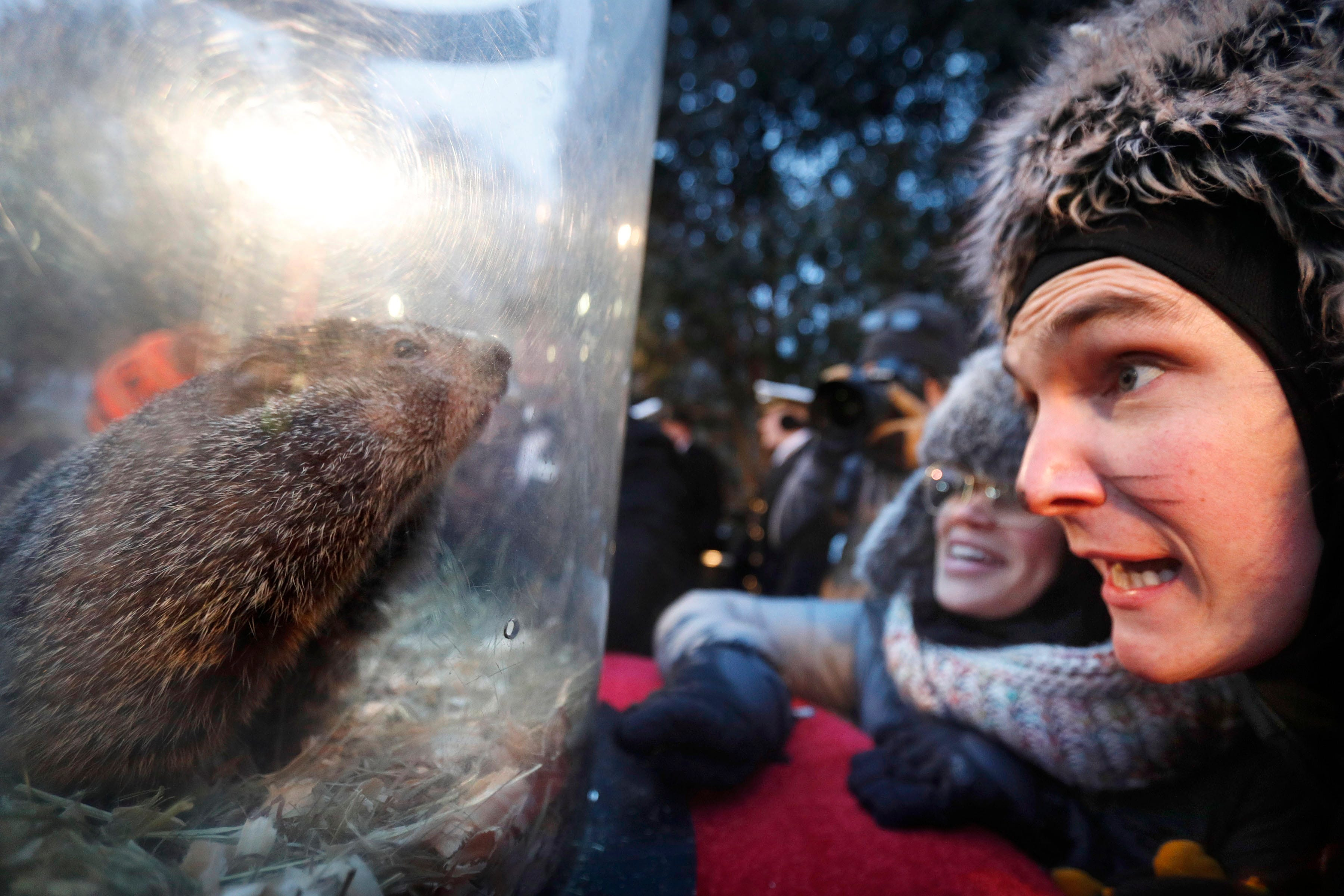 Visitors to Gobblers Knob greet Punxsutawney Phil after he made his prediction during the Groundhog Day celebration at Gobblers Knob in Punxsutawney, Pa. on Feb. 2, 2019. The Groundhog did not see his shadow, and predicted an early spring.
