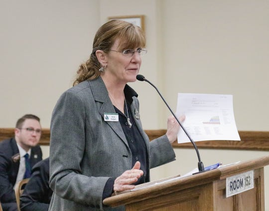 Anne Hedges, deputy director and lead lobbyist of the Montana Environmental Information Center, testifies in support of a bill that would create a carbon tax on Jan. 30.