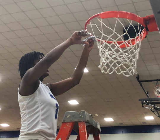 Malea Jackson cuts down the net after HSE won a sectional title over Carmel.