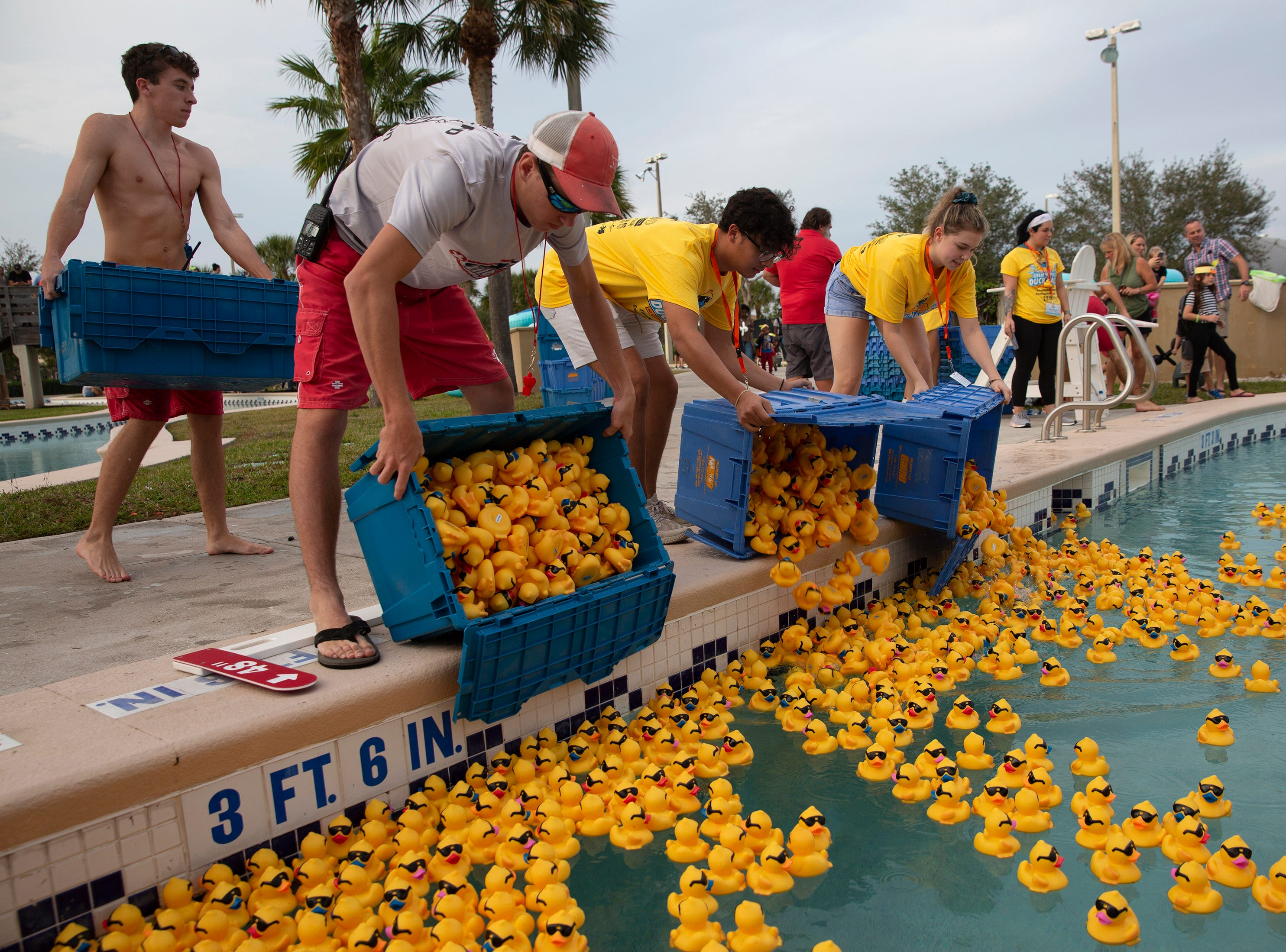 Volunteers prepare rubber ducks for the Great Naples Rubber Duck Race on Saturday, Feb. 2, 2019, at the Sun-N-Fun Lagoon in East Naples.