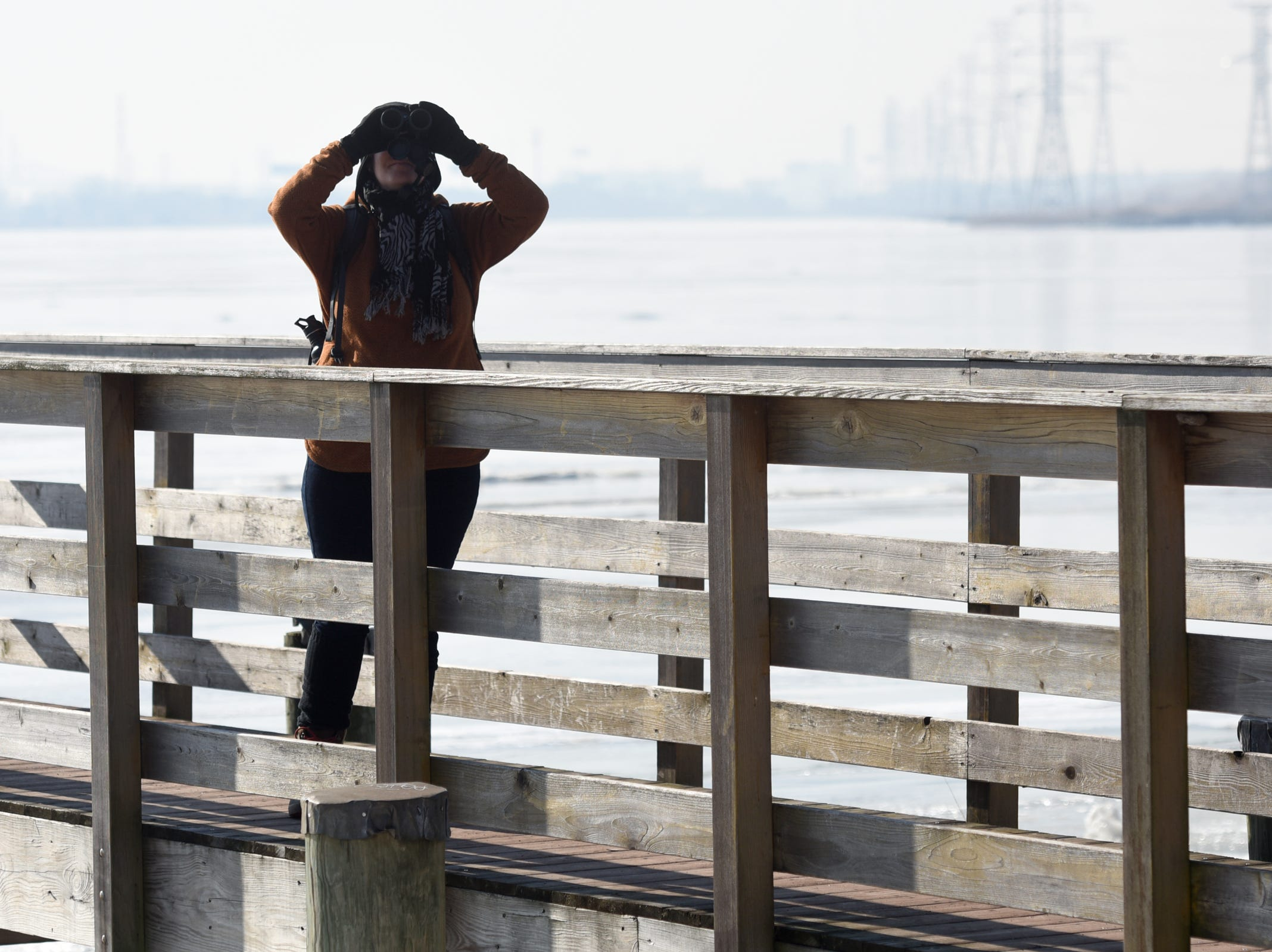 Martha Harbison of Brooklyn, NY watches a bird during the Bergen County Audubon Society wintering birds and nature walk at Dekorte Park in Lyndhurst on Sunday, February 3, 2019.